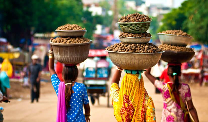 Туры в прекрасную Индию: обзор интересных мест